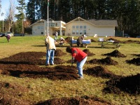 raking-piles-of-manure