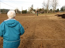 staking-the-field
