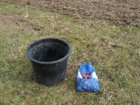 start-potato-container