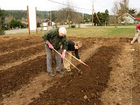 working-in-the-lime-and-fertilizer