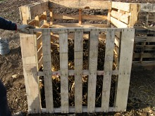 compost-bins-with-front-pallet