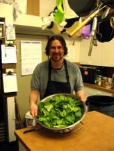 harvest-bok-choi-in-kitchen