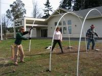 hoophouse-hoops-starting1