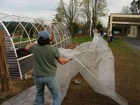 hoophouse-plastic-going-over