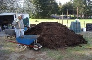 29april09-cow-manure-piles1