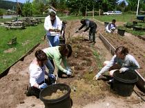 edmonds cc mulch and water