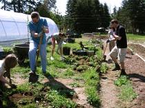 edmonds cc prepping for square ft garden