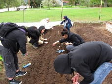 Bayview high school planting seeds