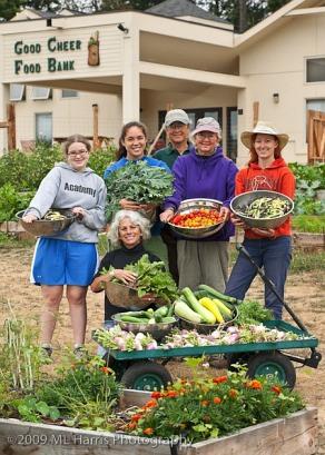 MLHarris group garden photo