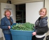harvest kale march bring into food bank1_4633