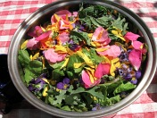 salad2_9001