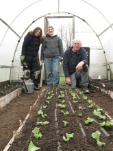 hoophouse lettuce starts planted_4124