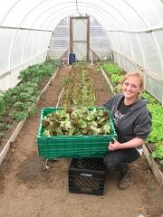 camille lettuce_4636