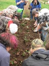 HUB prepping strawberries_4481