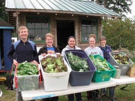 harvest may Wartburg1_5226