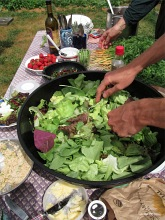 picnic salad_0724