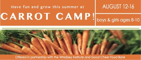 carrot camp header