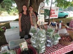 Bayview Farmers Market Bur Oak_1186