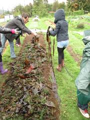 wellington seaweed spread2_0415
