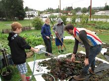 wellington seaweed wash off_0398