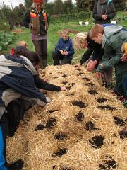 wellington start planting_0423