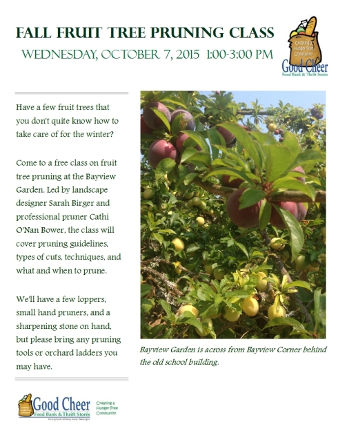 Fall Fruit Tree Pruning Class Flyer_10.3.15