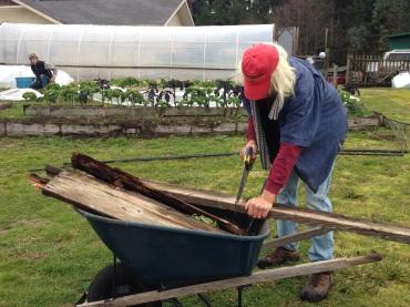 Pete salvaging materials.