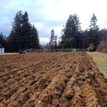 The Big Acre, plowed.