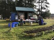 Volunteers bagging greens and roots
